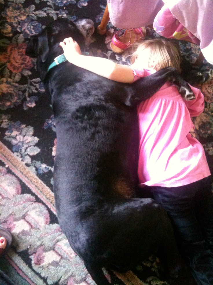 Vegas and Ireland snuggling. This would've been in the Spring of 2010. She would let him lay on her lap, too!